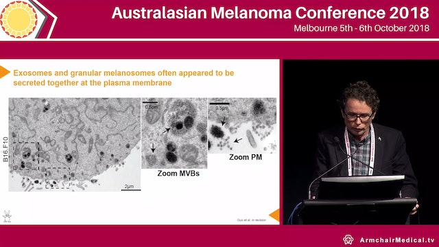 Dynamic regulation of melanoma cell proliferation and therapy resistance Nikolas Haass