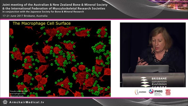 Imaging the macrophage surface Dorsal ruffling in a new light Prof Jennifer Stow