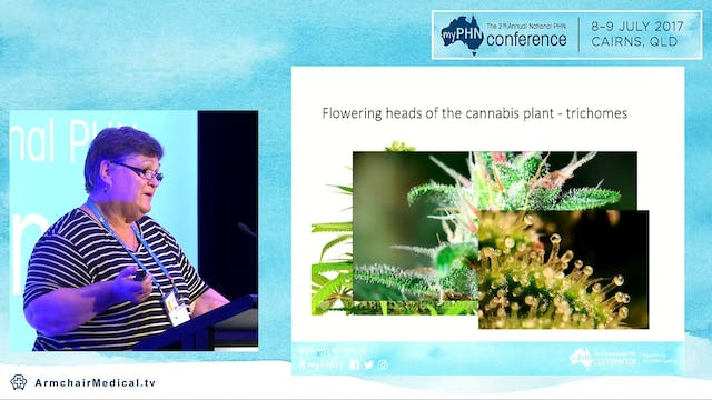 Medicinal cannabis - where are we up to Dr Sue Ballantyne