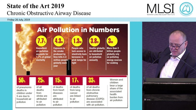 COPD and air pollution Prof Klaus Rabe