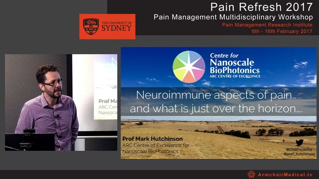 Neuroimmune aspects of pain and what ...