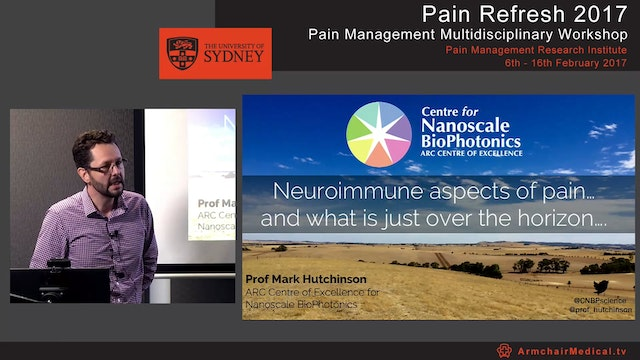 Neuroimmune aspects of pain and what is just over the horizon Professor Mark Hutchinson
