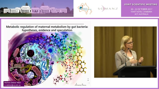 Metabolic regulation of maternal metabolism by gut bacteria hypotheses, evidence and speculation - Marloes Dekker Nitert