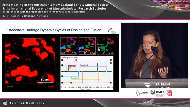 Intravital imaging of osteoclasts in vivo reveals a novel cell fate mechanism Dr Michelle McDonald