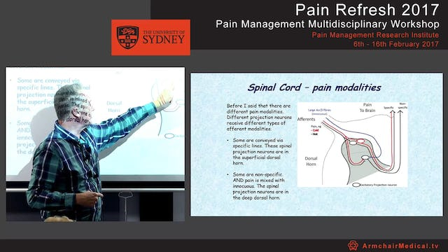 Spinal mechanisms - for pain & analgesia Dr Chris Vaughan