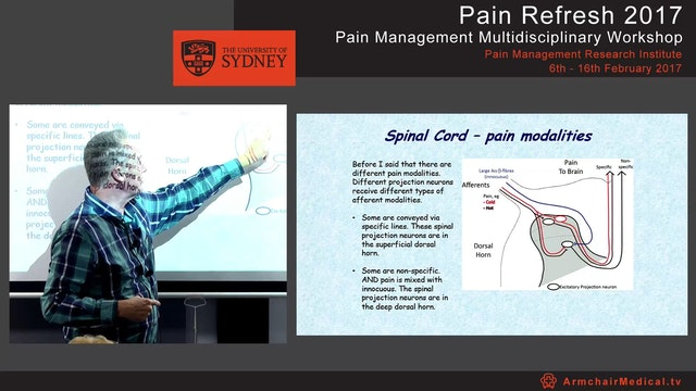 Spinal mechanisms - for pain & analge...