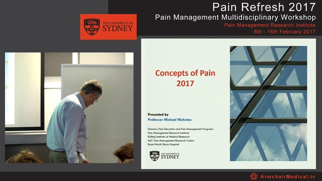 Concepts of Pain 2017 Professor Micha...