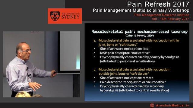 Overview of musculoskeletal pain Part 2 Professor Milton Cohen