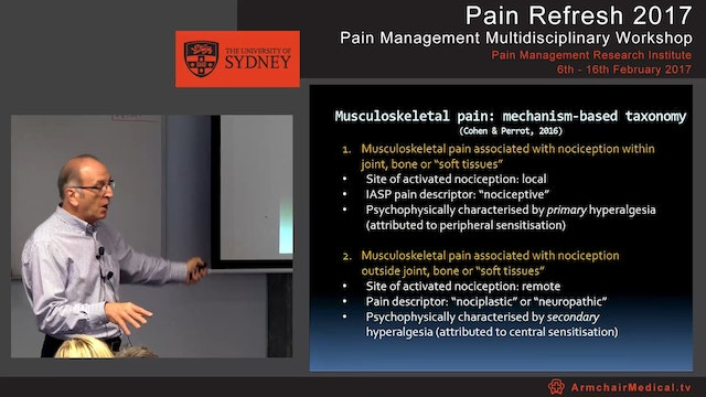 Overview of musculoskeletal pain Part 2 Professor Milton Cohen