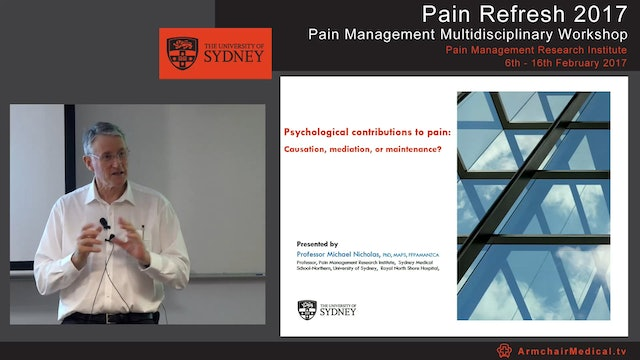 Psychological contributions to pain - causation, mediation, or maintenance Professor Michael Nicholas