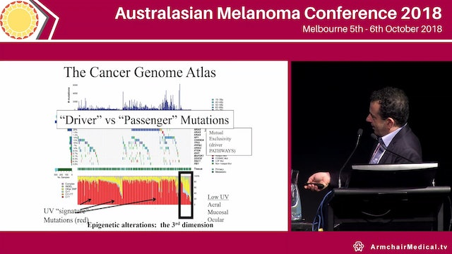 Melanoma clues to therapeutic efficacy from disease pathogenesis David Erich Fisher