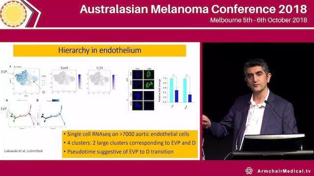 Origin of vascular progenitors driving melanoma angiogenesis in vivo Kiarash Khosrotehrani