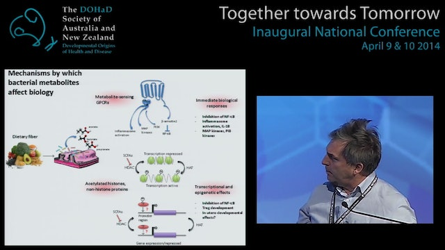 Obesity Mechanisms and pathways