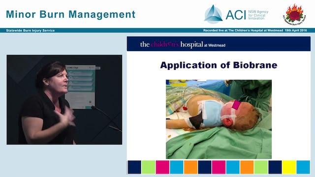 Biobrane Product Information & Nursing Wound Management Guidelines Deborah Maze