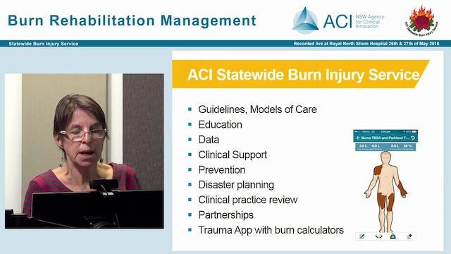Introduction to ACI Statewide Burn Injury Service Anne Darton