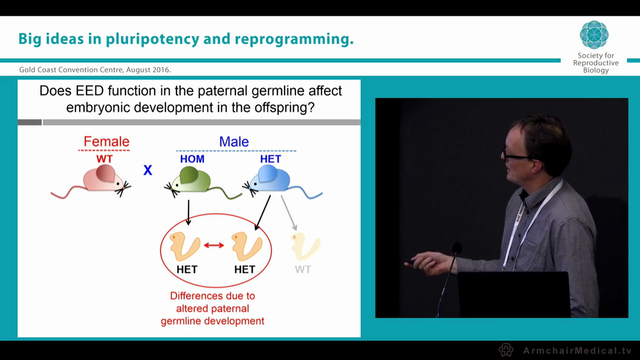 Drugs, germline epigenetics and offsp...