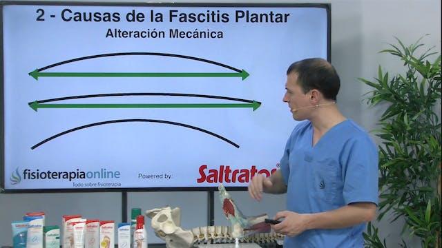 S6-E7 Fascitis Plantar