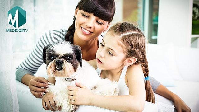 S1-Clip 3 - Las mascotas y los niños