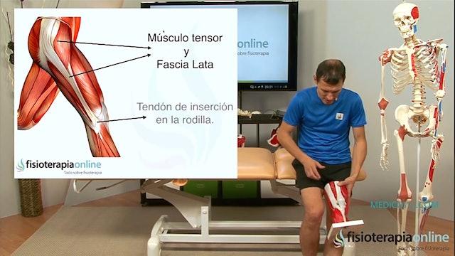 S5-E2 Ejercicios para mejorar la artrosis de rodilla