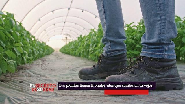 S1-E8 Los secretos de la edad de Migdalia Leon & Carlos Jimenez