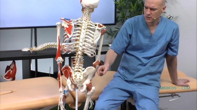 S3-E8 Alteraciones ginecológicas y los problemas lumbares en la mujer