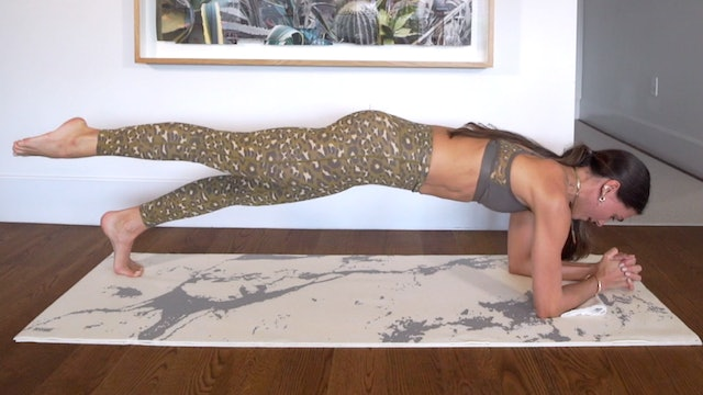 15 Min Forearm Power Planking Series