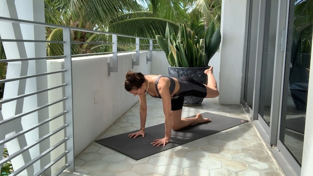 17 Min Full Body Using Your Own Body Weight