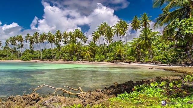 MLTV-Session 2121 Tropical Landscapes...