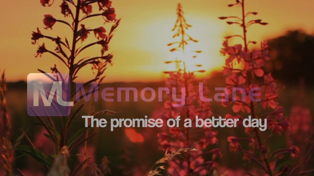 """""""The Context of the Memory Lane Collection"""""""