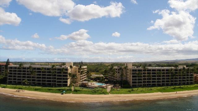 """""""Soaring Over Maui""""-S1322"""