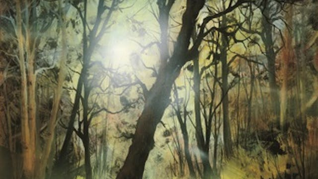 """""""Golden Rays of Sunlight-Painting wit..."""