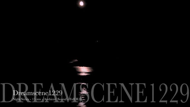 "DS1270 - Night Series - ""Moonlight"" -..."