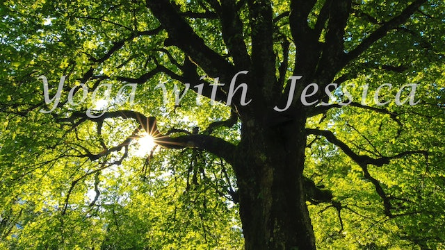 "Yoga with Jessica - ""Wiggling to Relax and Energize""-S5269"