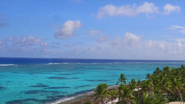 """Above the Fiji Islands""-S3594"