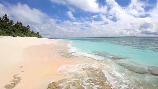 """""""Tropical Paradise""""-S535p2"""