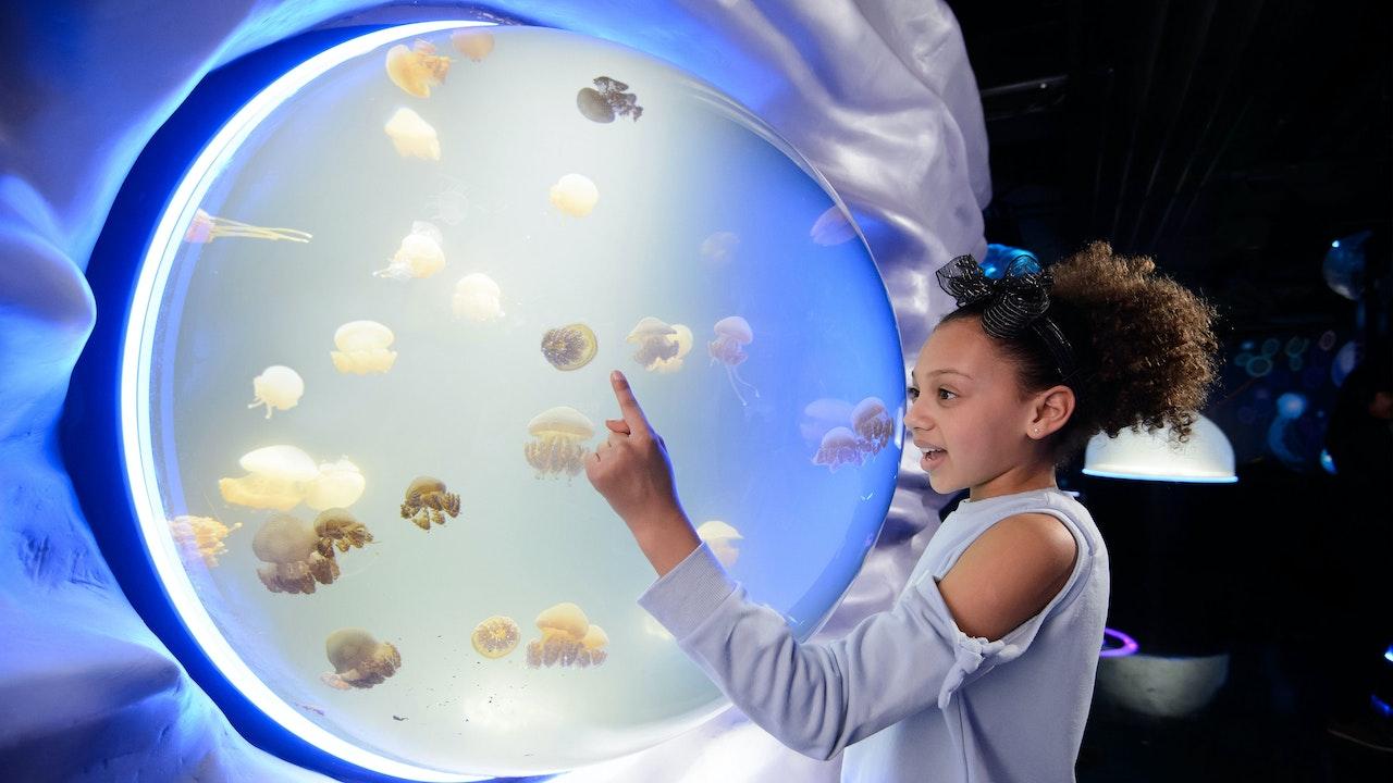 Creature Needs.. (Biology & Environmental)