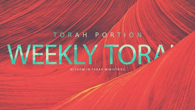 Torah Portions w/ Rico Cortes
