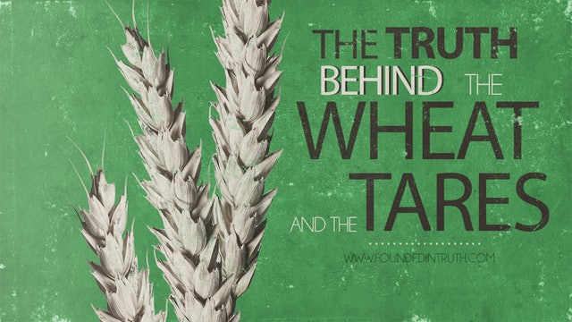 The Parable Series: The Wheat and the Tares