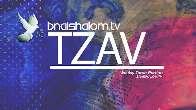 Tzav | Lion & Lamb Ministries