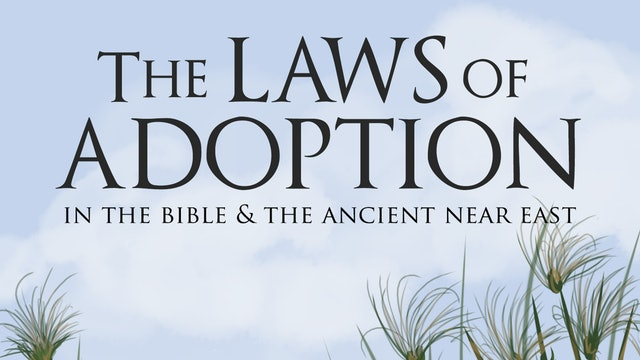 Laws of Adoption