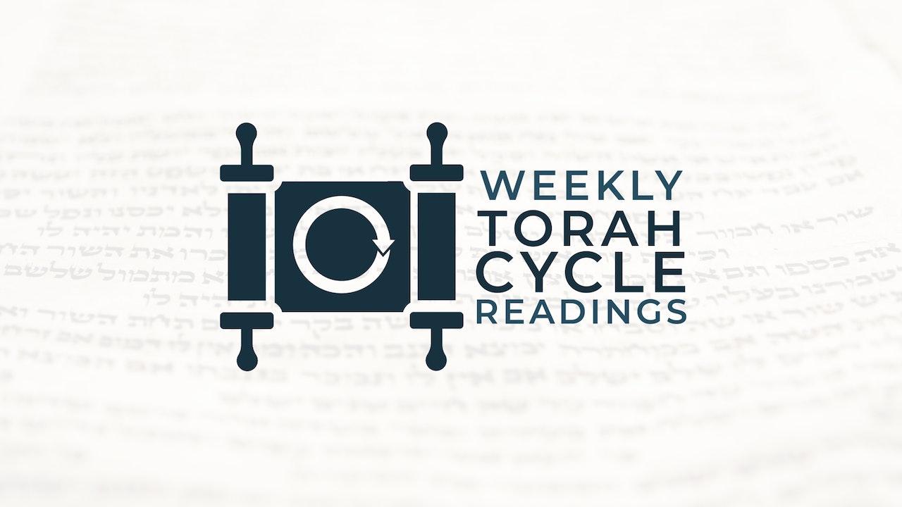 Weekly Torah Portions