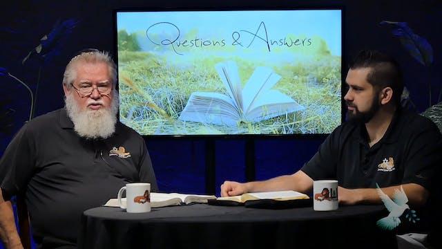 Questions & Answers | Lion & Lamb Min...