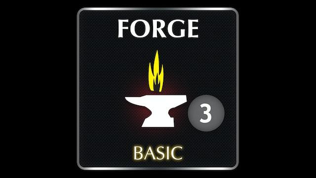 FORGE Basic  3