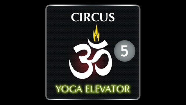 CIRCUS YOGA ELEVATOR 5