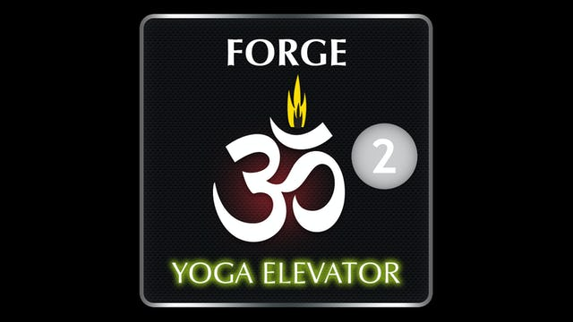 FORGE YOGA ELEVATOR 2