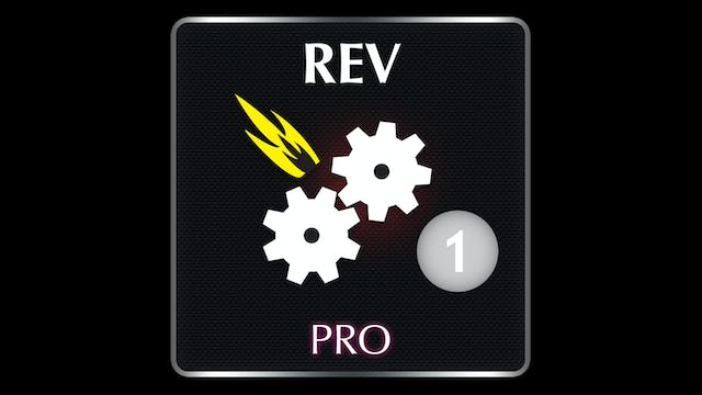 REV  Professional 1