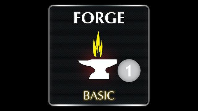 FORGE  Basic 1