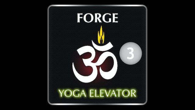 FORGE YOGA ELEVATOR 3