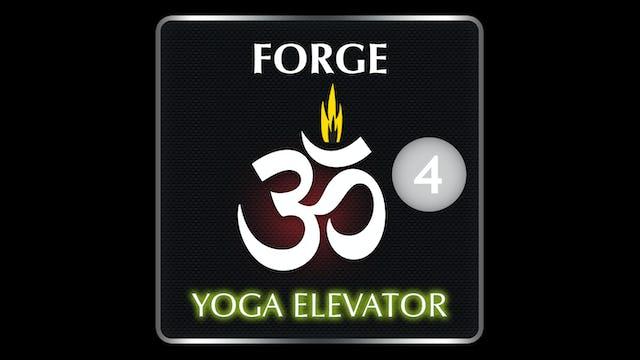 FORGE YOGA ELEVATOR 4