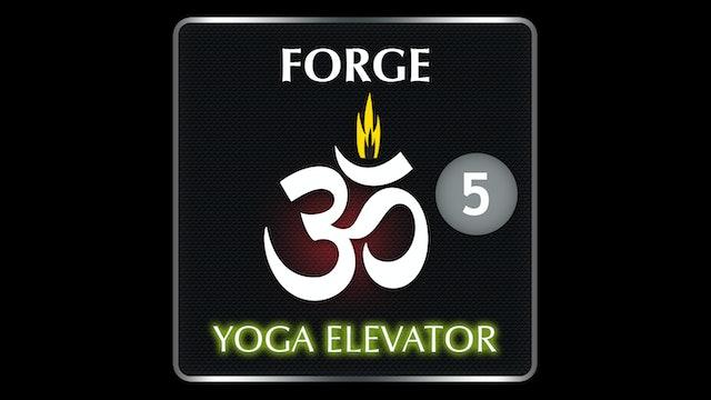 FORGE YOGA ELEVATOR 5